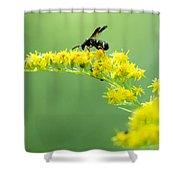 Drinking Up Flower Nectar Shower Curtain
