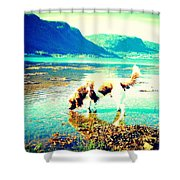 Springer Spaniel Drinking Water From The Big Blue Sea  Shower Curtain