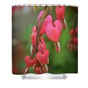 Dripping With Love Shower Curtain by Mary Machare