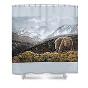 Driven To Rest Shower Curtain
