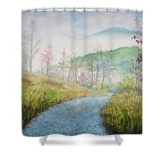 Driving Down The Mountain Shower Curtain