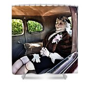 Driving Miss Daizee Shower Curtain