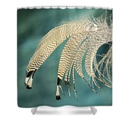 Droopy Feather Shower Curtain