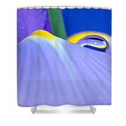Drop Of Spring Shower Curtain