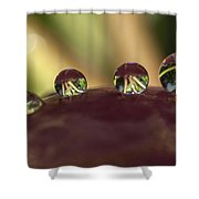 Droplets On An Apple Shower Curtain