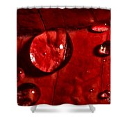 Droplets On Red Shower Curtain