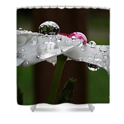 Drops Of Life Shower Curtain