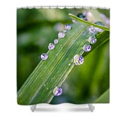 Drops On Grass Shower Curtain