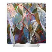 Drought Relief Shower Curtain