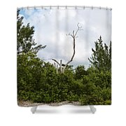 Druid Dance Shower Curtain