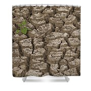 Dry Cracked Mud  Shower Curtain