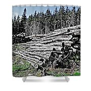 Dry Firewood Shower Curtain