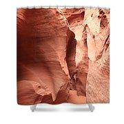 Dry Fork Sandstone Shower Curtain by Adam Jewell