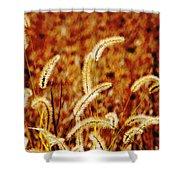 Dry Grass Shower Curtain