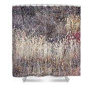 Dry Grasses And Bare Trees In Winter Forest Shower Curtain by Elena Elisseeva