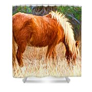 Dry Marsh Grasses Shower Curtain