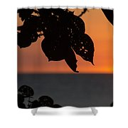 Dry Season Sunset Shower Curtain