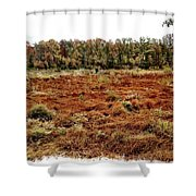 Dry Swamp Shower Curtain