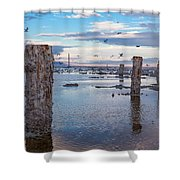 Drying Dock Shower Curtain