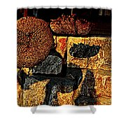 Drying Out Shower Curtain by Chris Berry