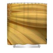 Dsc332-006 Shower Curtain