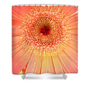 Dscn5240a1 Shower Curtain