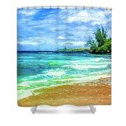 D T Fleming Beach Park Shower Curtain