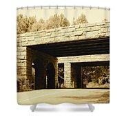 Dual Bridges Shower Curtain