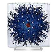 Dual Citizenship 1 Shower Curtain