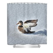 Duck Angel Shower Curtain