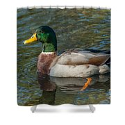 Duck Call Shower Curtain