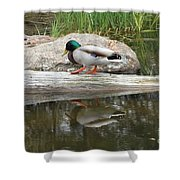 Duck Duck Shower Curtain