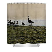 Duck Family Panorama Shower Curtain by Bill Cannon
