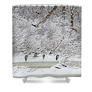 Duck Fly Over Herons On Maumee River Shower Curtain
