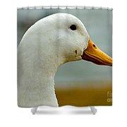 Duck Head Shower Curtain