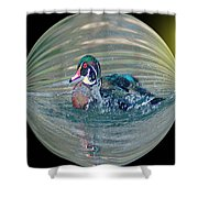 Duck In A Bubble  Shower Curtain