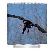 Duck In Flight Shower Curtain