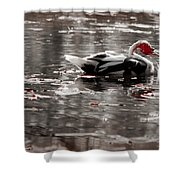 Duck In Lake  Shower Curtain