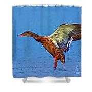 Duck Landing Shower Curtain