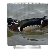Angry Wood Duck Shower Curtain