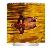 Duck On Golden Water Shower Curtain