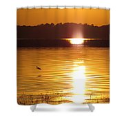 Duck On Sunset Shower Curtain