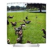 Duck Season Shower Curtain