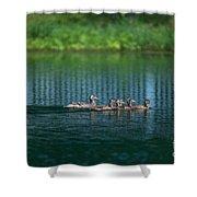 Duck Slide Shower Curtain