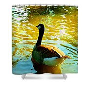 Duck Swimming Away Shower Curtain