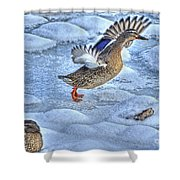 Duck Take-off Shower Curtain