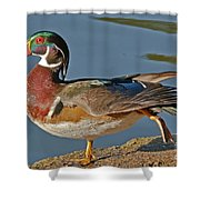 Duck Yoga Shower Curtain
