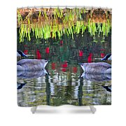 Duckland Pond Reflections Shower Curtain