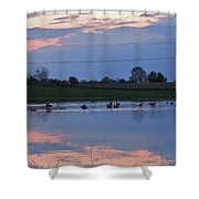 Ducks And Geese At Sunset Shower Curtain