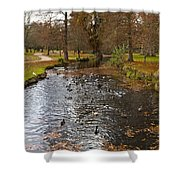 Ducks And Leaves Shower Curtain
